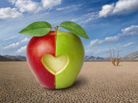 3 boyutlu elma resim